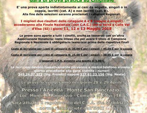 SELEZIONI REGIONALI UMBRIA PER CANI DA SEGUITA SU CINGHIALE