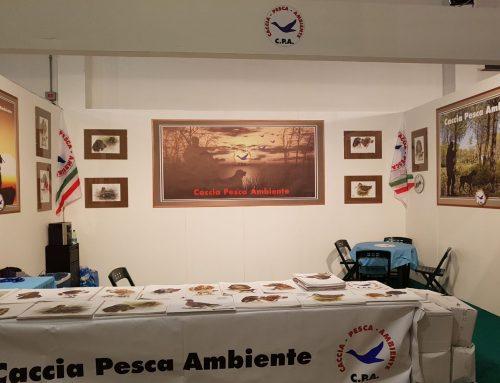 C.P.A. Caccia Village 2018
