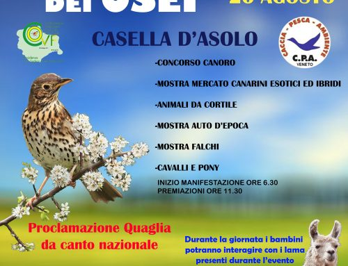 6° FIERA DEI OSEI – CASELLA D'ASOLO (TV) – 20 AGOSTO 2018