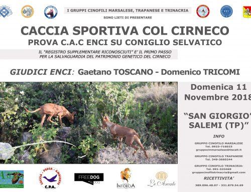PROVA CINOFILA SU CONIGLIO SELVATICO – SAN GIORGIO SALEMI (TP) 11/11/2018